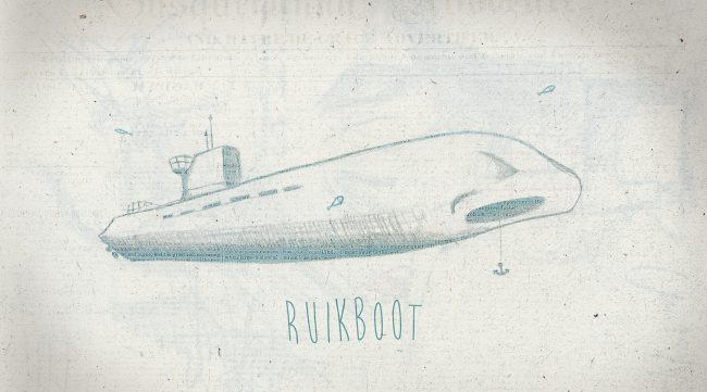 Ruikboot